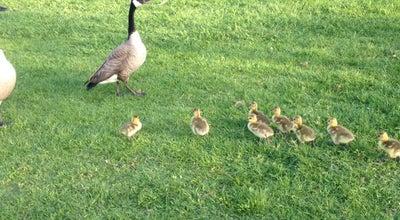 Photo of Park Heather Farm Park at 301 N San Carlos Dr, Walnut Creek, CA 94598, United States