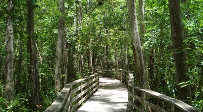 Photo of Trail Audubon's Corkscrew Swamp Sanctuary at 375 Sanctuary Rd, Naples, FL 34120, United States