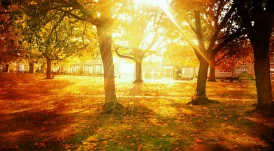 Photo of Park Hillsborough Park at Parkside Road S2 AB6, United Kingdom