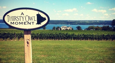 Photo of Winery Thirsty Owl Wine Company at 6799 Elm Beach Rd., Ovid, NY 14521, United States
