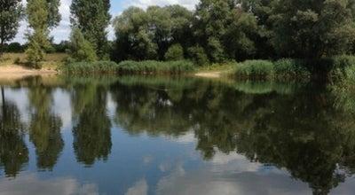 Photo of Lake Baggersee Waldstadt at Glogauer Str., Karlsruhe 76139, Germany
