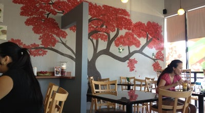 Photo of Vietnamese Restaurant Season's Cafe & Bakery at 7261 Us Highway 19 N, Pinellas Park, FL 33781, United States