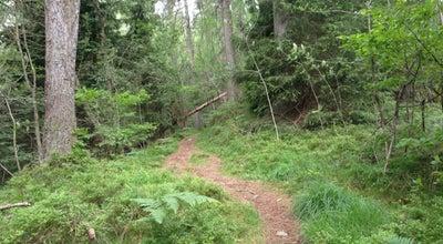 Photo of Trail Langeskogen at Norway