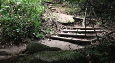 Photo of Trail Trilha Morro da Urca at Mro. Da Urca, Rio de Janeiro, Brazil