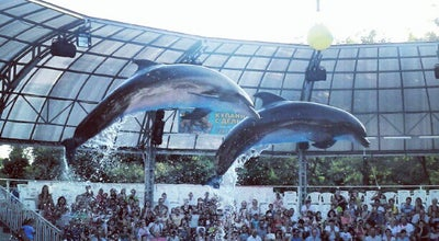 Photo of Aquarium Дельфинарий Немо / Nemo Dolphinarium at Пляж Ланжерон, 25, Одесса 65000, Ukraine