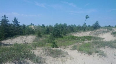 Photo of Beach Sandbanks Provincial Park: Dunes at Prince Edward, ON, Canada