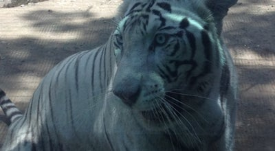 Photo of Zoo Zoo Culiacán at Paseo Niños Heroes S/n, Culiacan 80000, Mexico