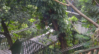 Photo of Park Hutan Kota Babakan Siliwangi (Baksil) at Jl. Tamansari, Bandung, Indonesia