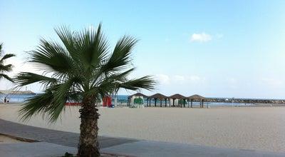 Photo of Breakfast Spot Mona Beach (מונה ביץ') at חוף אכדיה, Herzliya, Israel