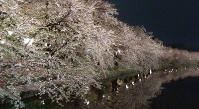Photo of Park 弘前公園 at 下白銀町1-1, 弘前市 036-8356, Japan