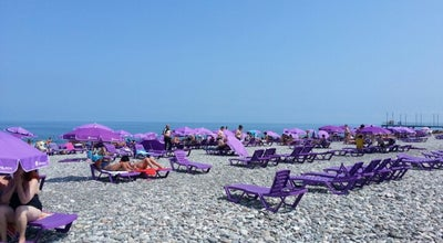Photo of Beach Purple Umbrellas at Batumi Beach, Batumi 6000, Georgia