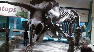 Photo of Science Museum Dinosaurs/Hall of Paleobiology Exhibit at Lenfant Plz Sw, Washington, DC 20560, United States