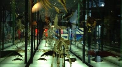 Photo of Science Museum Museo Elder de la Ciencia y la Tecnología at Parque De Santa Catalina S/n, Las Palmas de Gran Canaria 35007, Spain