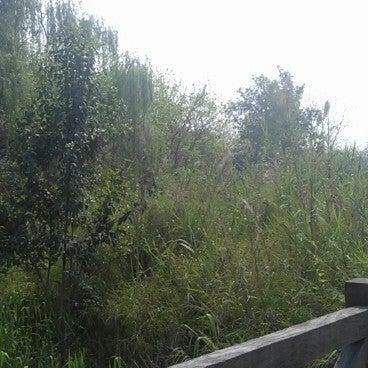浣花溪公园 Huan Hua Xi Park