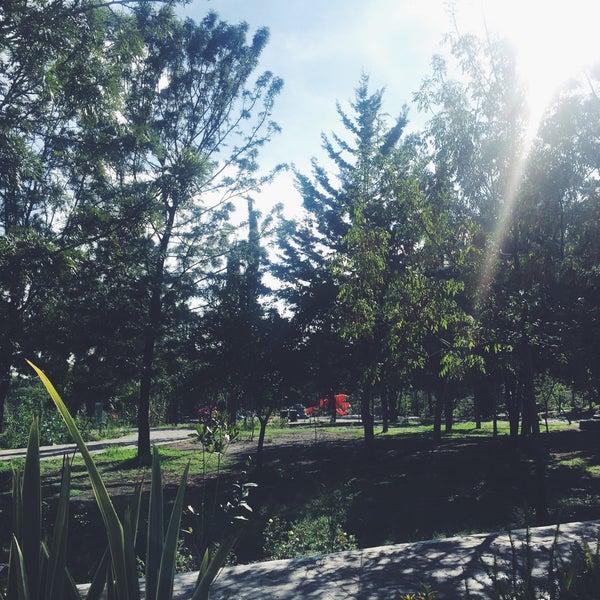 Photo taken at Parque Ecologico Huayamilpas by Alexis N. on 6/30/2016