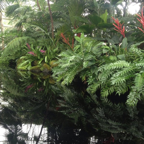 Photo taken at Enid A. Haupt Conservatory by Robert S. on 5/18/2013