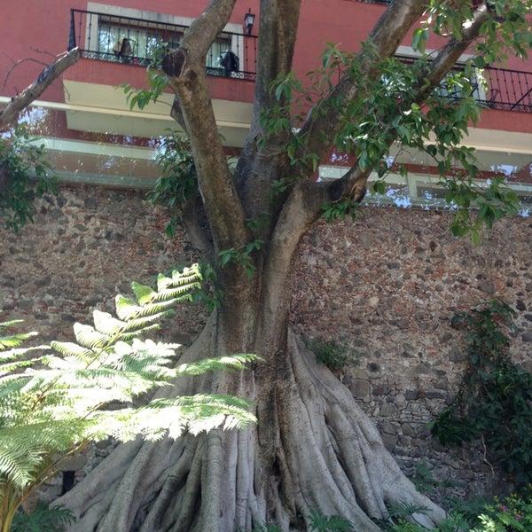 Photo taken at Hotel & SPA Hacienda de Cortés by Ninfa P. on 4/3/2013
