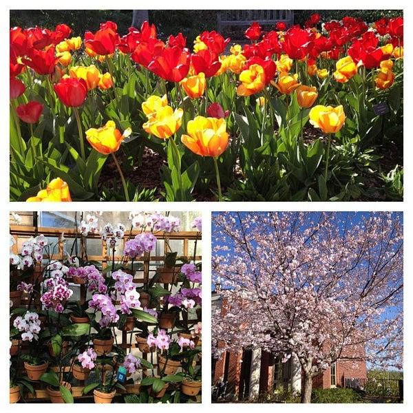 Photo taken at Atlanta Botanical Garden by Jordan K. on 4/1/2013