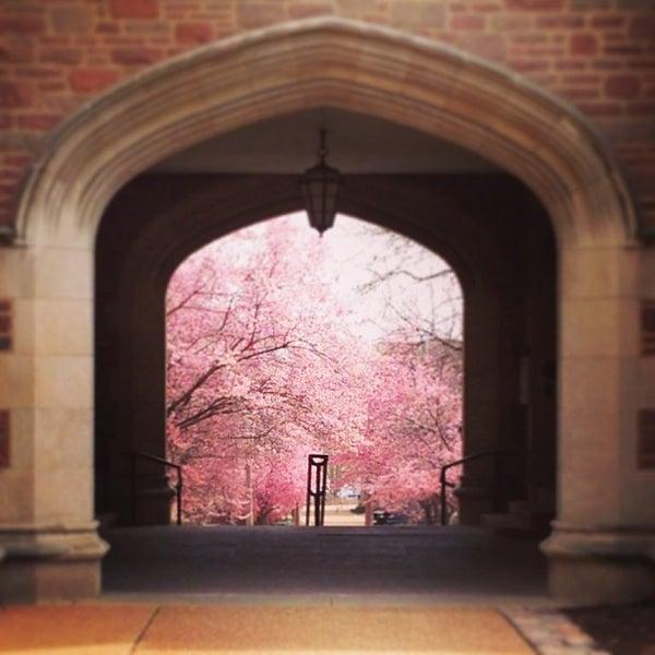 Photo taken at Washington University in St. Louis by Chelsea N. on 4/6/2013