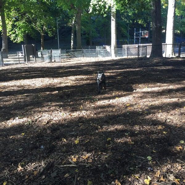 Photo taken at Marcus Garvey Park - Dog Run by Michael R. on 10/10/2016
