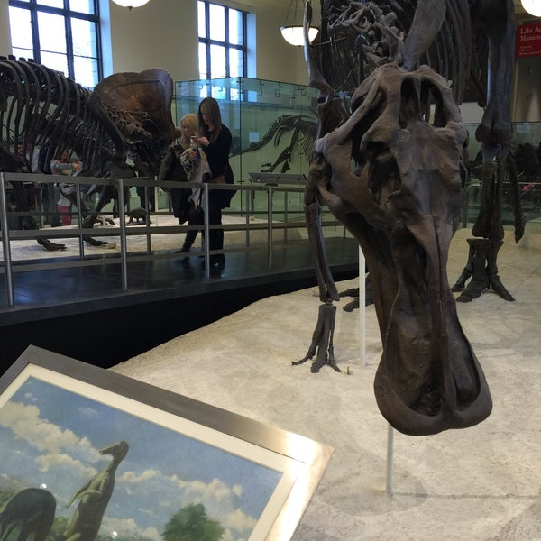 Photo taken at David H. Koch Dinosaur Wing by Théo B. on 1/1/2016