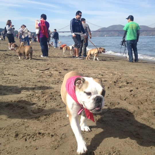 Photo taken at Crissy Field by WreSalene on 2/16/2013