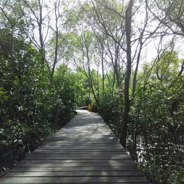 Photo taken at Ekowisata Mangrove by bintoro S. on 4/14/2015