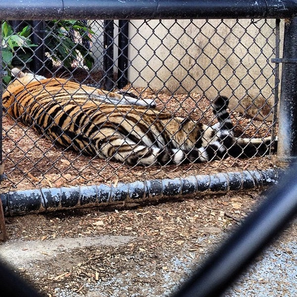 Photo taken at LSU - Mike's Habitat by Tony B. on 3/17/2013