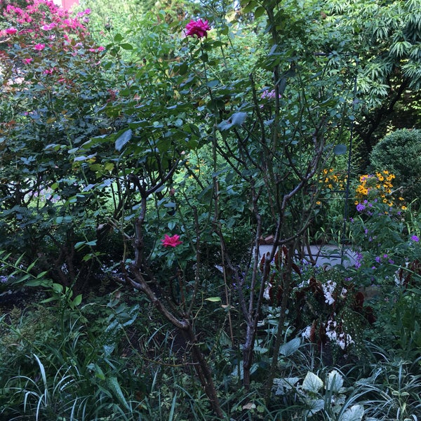 Photo taken at The Garden at St. Luke in the Fields by Casey A. on 8/19/2016