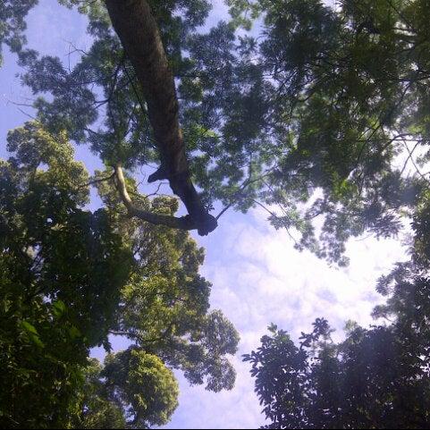 Photo taken at Kebun Binatang Ragunan by Niswah A. on 12/22/2012
