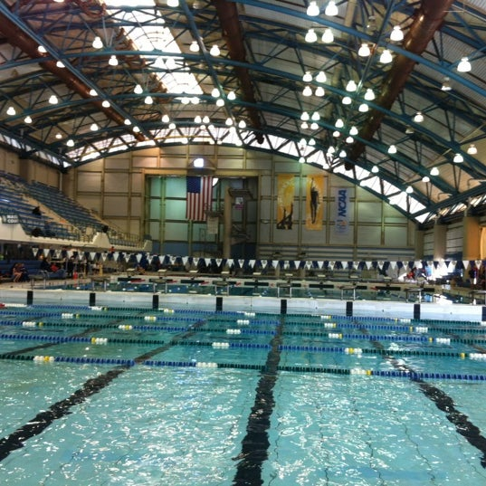 Aquatic center nassau county aquatic center - Ymca flushing swimming pool schedule ...