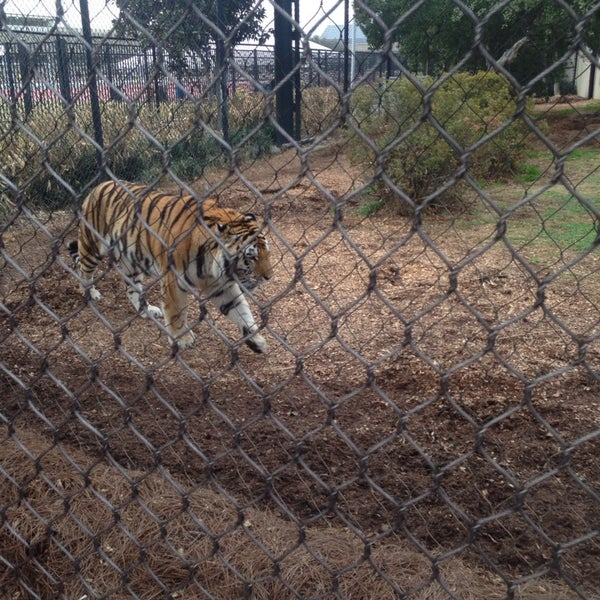 Photo taken at LSU - Mike's Habitat by Troy P. on 2/22/2014