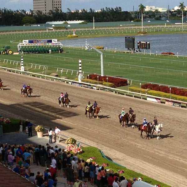 gulfstream race tips on JumPic com