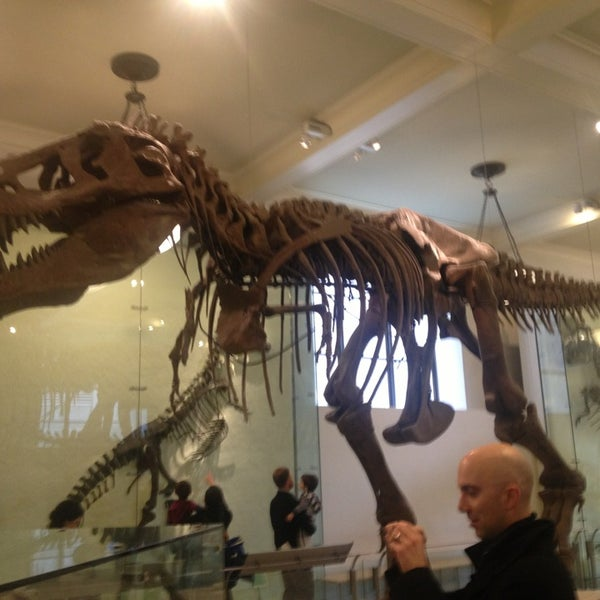 Photo taken at David H. Koch Dinosaur Wing by Dennis P. on 3/16/2013