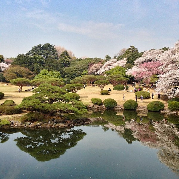Photo taken at 新宿御苑 (Shinjuku Gyoen) by David B. on 3/28/2013