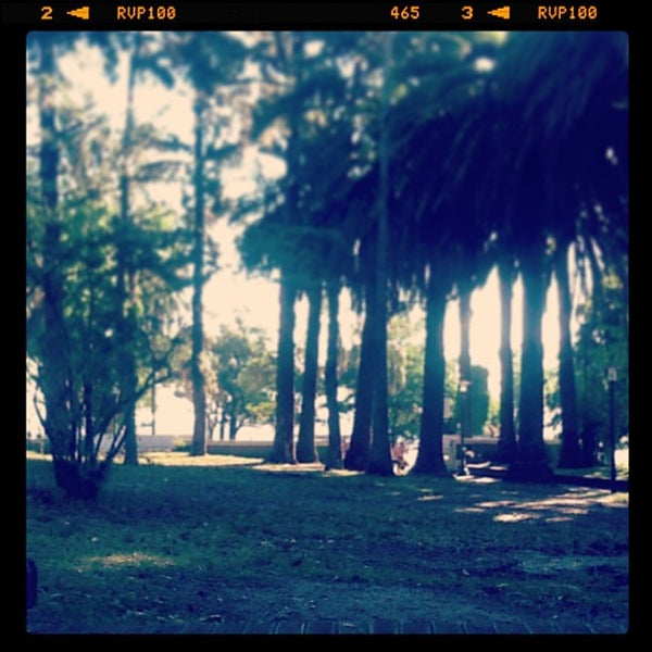 Photo taken at Parque José Enrique Rodó by Cesar G. on 12/12/2012