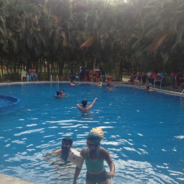 Country club swimming pool kumbalgodu karn taka - Club mahindra kandaghat swimming pool ...