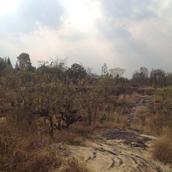 Photo taken at Parque Ecologico Huayamilpas by Al on 1/16/2013