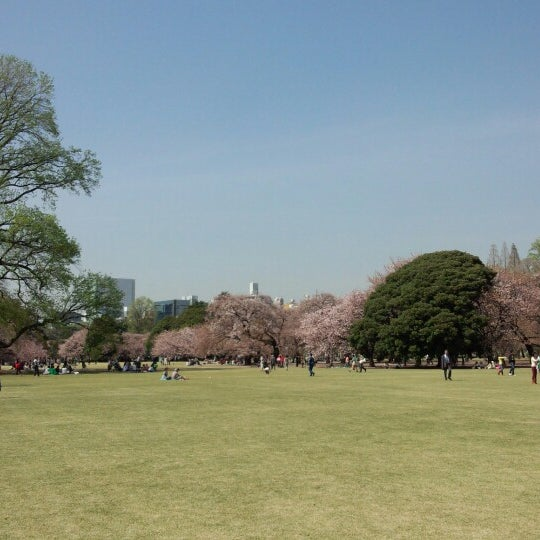 Photo taken at 新宿御苑 (Shinjuku Gyoen) by d w. on 4/4/2013
