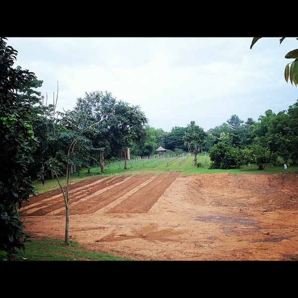 Photo taken at Lampang Vineyard by Jesada K. on 10/2/2012