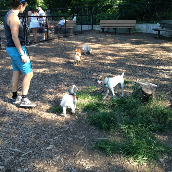 Photo taken at Cunningham Park Dog Run by Sandra B. on 8/25/2013
