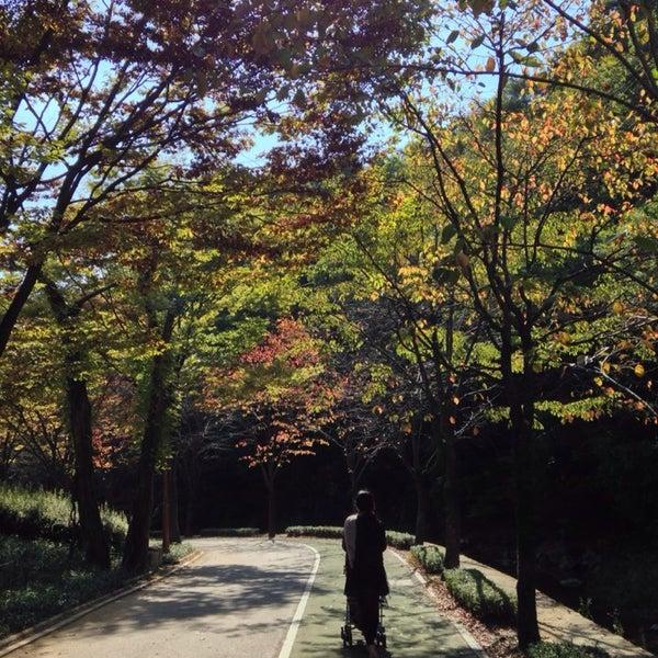 Photo taken at Yuldong Park by Karoline C. on 10/18/2013