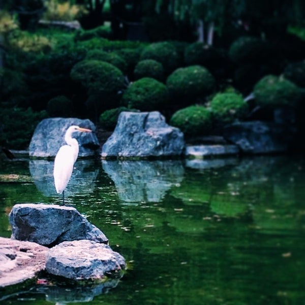 Photo taken at Japanese Friendship Garden by Joshua N. on 6/21/2014