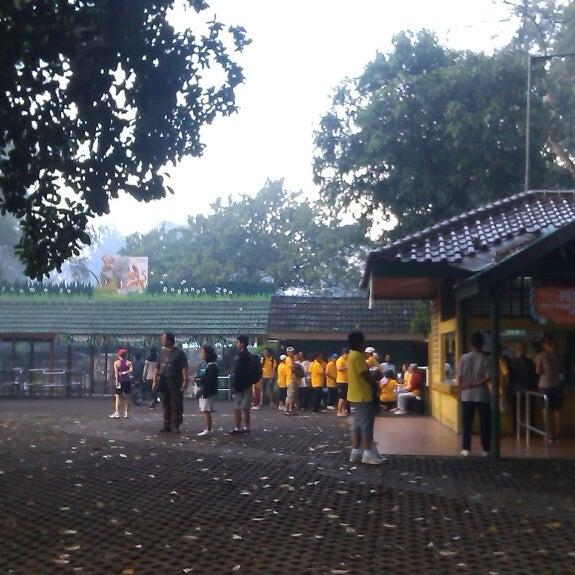 Photo taken at Kebun Binatang Ragunan by Lutfie R. on 6/28/2013