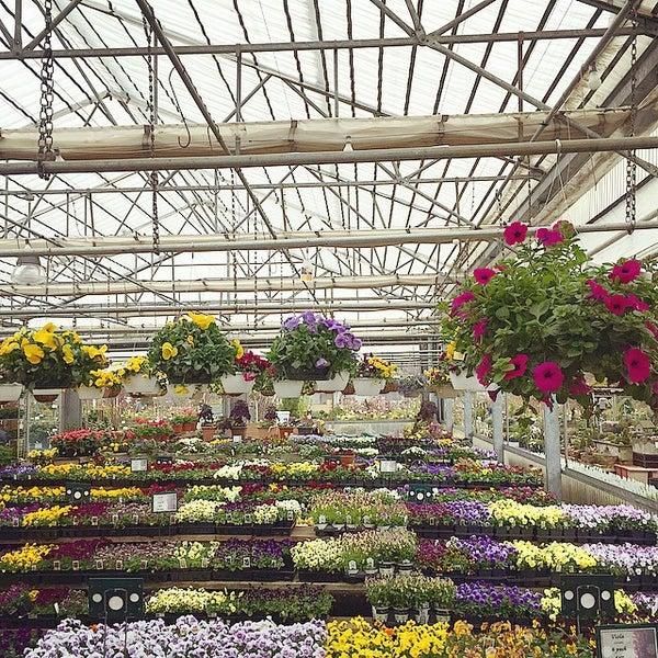 Merrifield Garden Center Garden Center In Fairfax