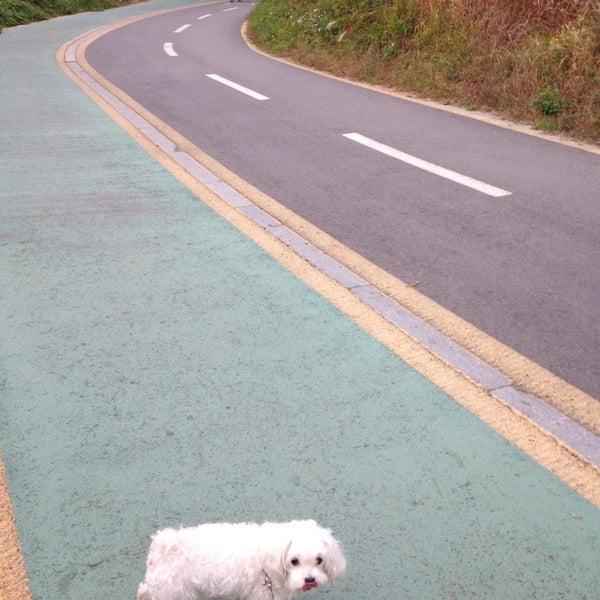 Photo taken at 광평교 by Minnie L. on 10/19/2014