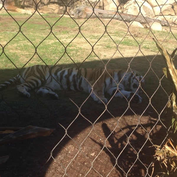 Photo taken at LSU - Mike's Habitat by Vince T. on 1/11/2014