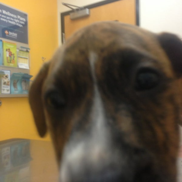 Photo taken at PetSmart by Brittney G. on 3/12/2013