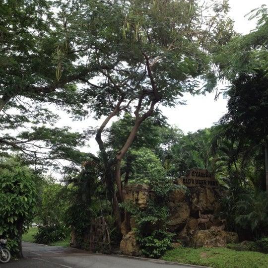 Photo taken at สวนสัตว์เปิดเขาเขียว (Khao Kheow Open Zoo) by Sky K. on 9/29/2012