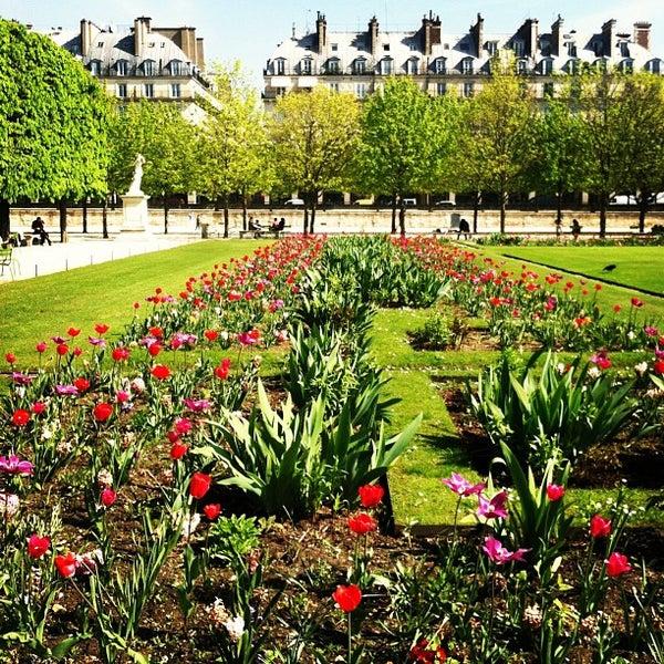 Jardin des tuileries paris le de france for Jardins tuileries paris france